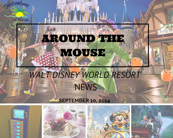 This week's Walt Disney World news update features: restaurant and attraction closures and reopenings, Mickey's Not-So-Scary Halloween Party news, allergy dining menu changes and more!