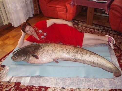 ...? (via 29 Completely Unexplainable Russian Dating Site Pictures) click to see more