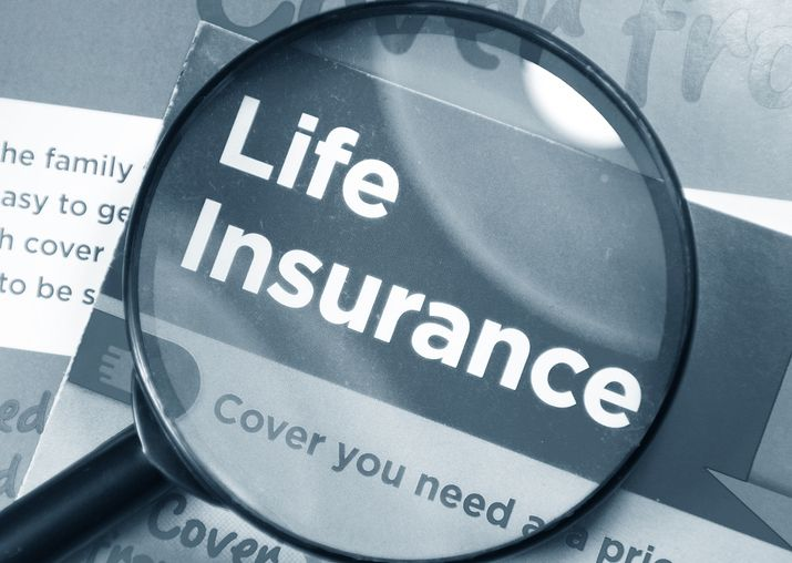 Learn Grow Life Cover Insurance Life Insurance Broker Life