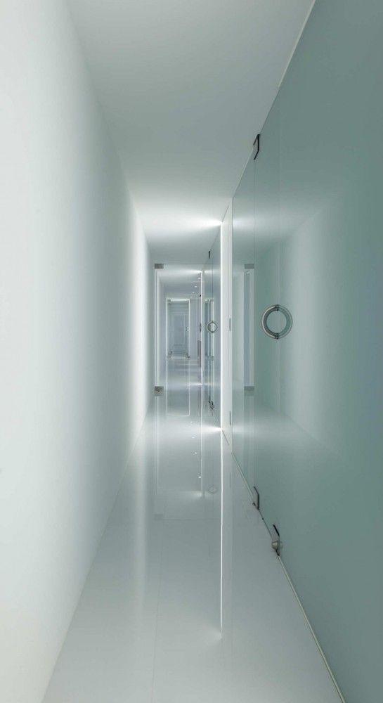 Forest View House Shinichi Ogawa Associates I N T E R I O R
