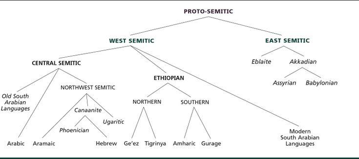 Semitic-tree