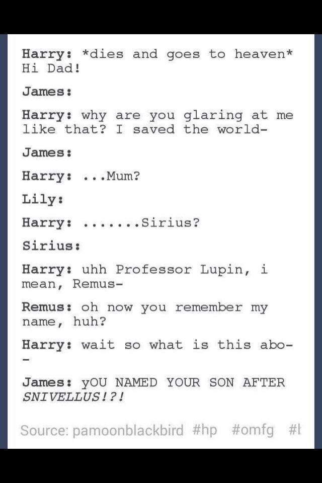 And then you see Severus in the background throwing a party and every so often pointing and laughing at James, Sirius, and Remus