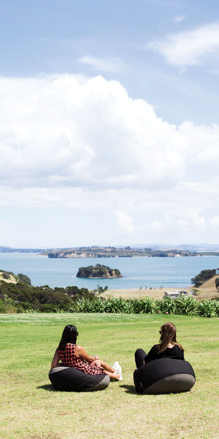 Basking in the sunlight at Cable Bay Vineyards, Waiheke Island - by Cindy Chen