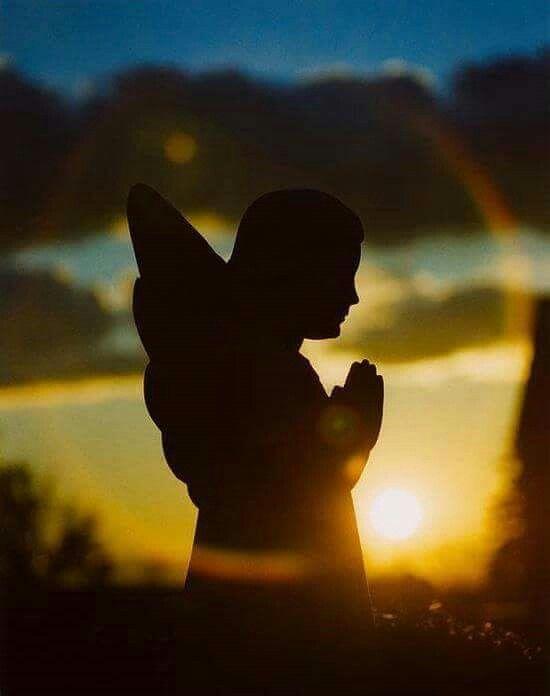 La Fede vede l'invisibile, crede l'incredibile, ottiene l'impossibile. Sri Sathya Sai Baba Photo  angel© Pinterest