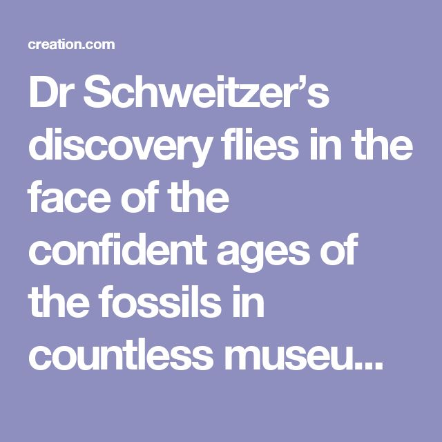 Dr Schweitzer's discovery flies in the face of the confident ages of the fossils in countless museums across the world. Her discovery calls into question the 'deep time' that the theory of evolution requires.