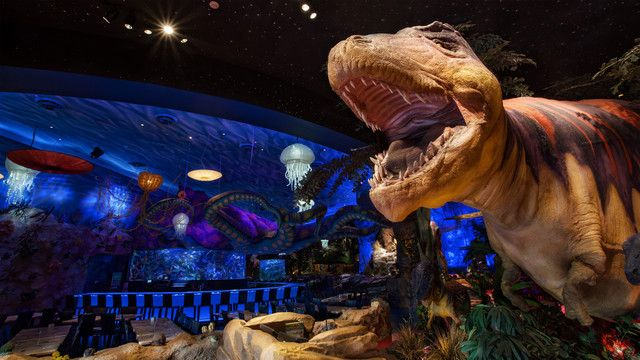 A complete guide to Disney Springs (formerly known as Downtown Disney) | WDW Prep School