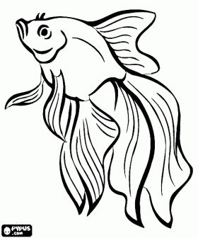 blowfish coloring page | Fishes coloring pages
