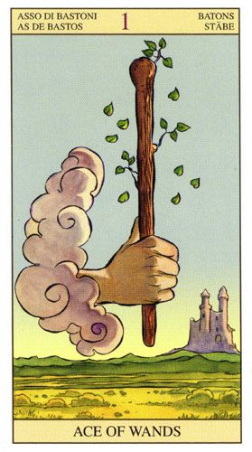 Таро Нового Видения (Нью Вижн) — Tarot of the New Vision | Энциклопедия карт…