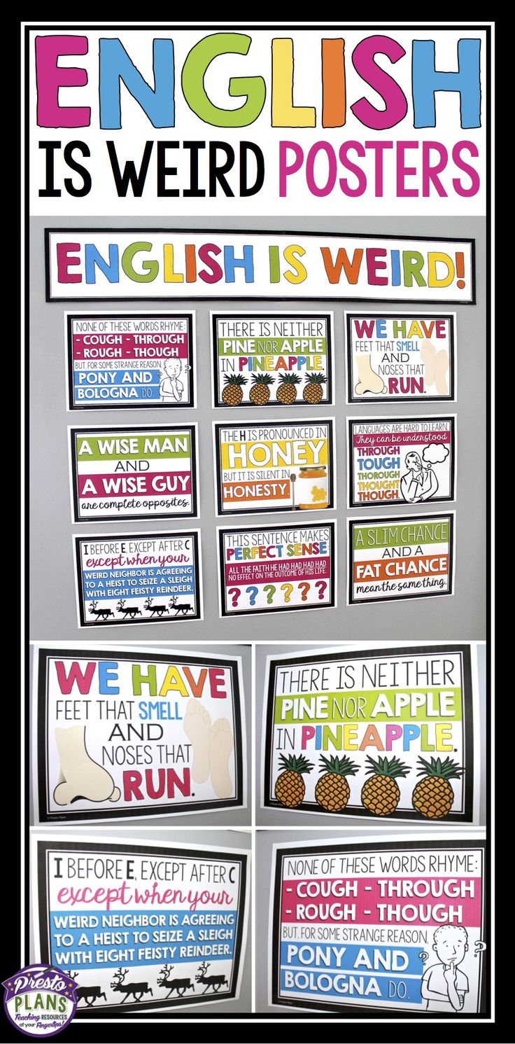 Show your students how strange and crazy the English language can be by decorating your bulletin board with these 9 funny posters. Each poster gives a funny statement that allows students to consider an illogical or surprising nature of the English language. Your students will definitely take notice of the display, and you may even get a few laughs!