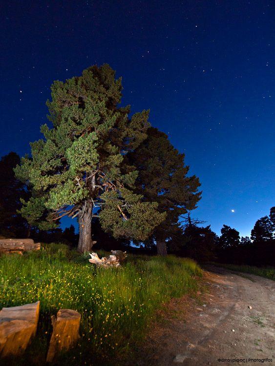 Under a Starry Sky by Dimitrios P. - Sarakatsana Refuge, Mt. Pieria, Pieria, Greece [photogrifos.deviantart.com]