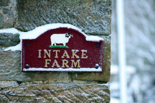 Intake Farm, Littlebeck £12 - Night14 (12/6)