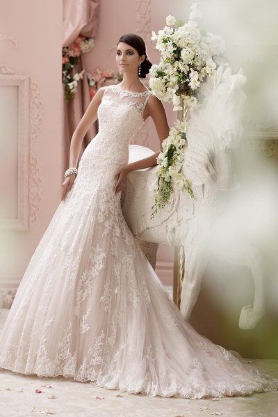 David Tutera Wedding Dresses Prices – Dresses for Woman