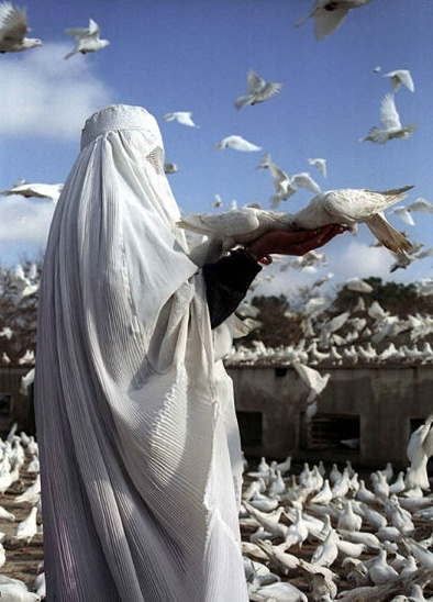 A woman in a white burqa feeds pigeons after paying respect to Imam Ali at his resting place in Mazar-i-Sharif, Afghanistan. Farzana Wahidy