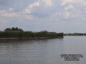 Jezioro Velence na Węgrzech (Velencei-tó) - Turkusowa Kropka