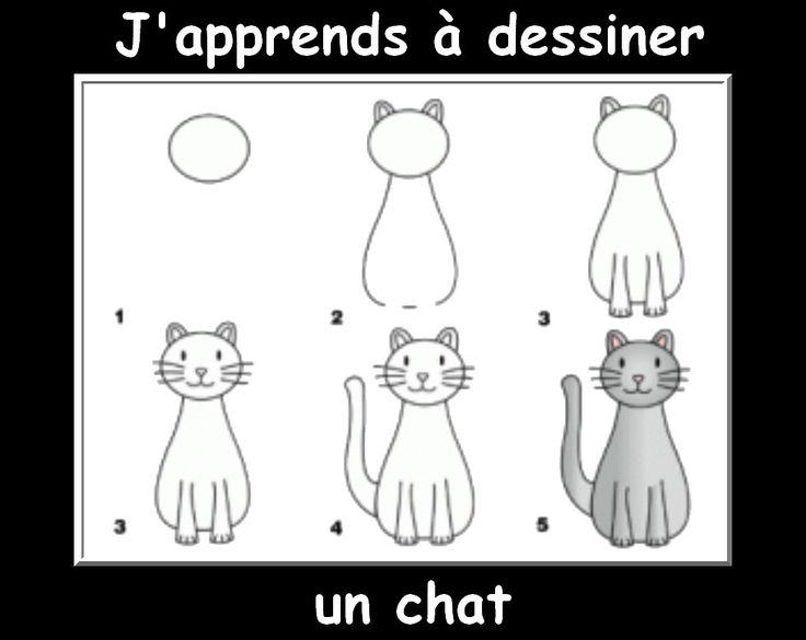 25 best ideas about dessin chat facile on pinterest tutoriel dessin chat du cheshire and - Animaux facile a dessiner ...