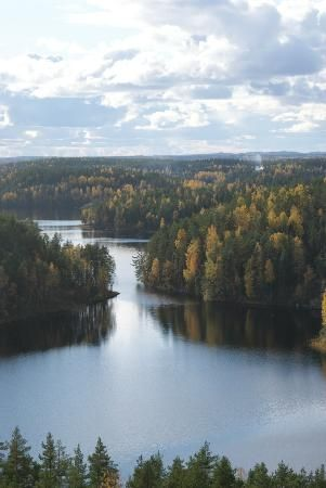 Photo of Repovesi National Park