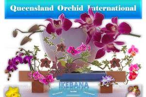 Ikebana Lessons with Orchids: Minimalist Flower Arrangement 🎍💐 https://queenslandorchid.wordpress.com/2015/06/17/ikebana-lessons-with-orchids-minimalist-flower-arrangement/