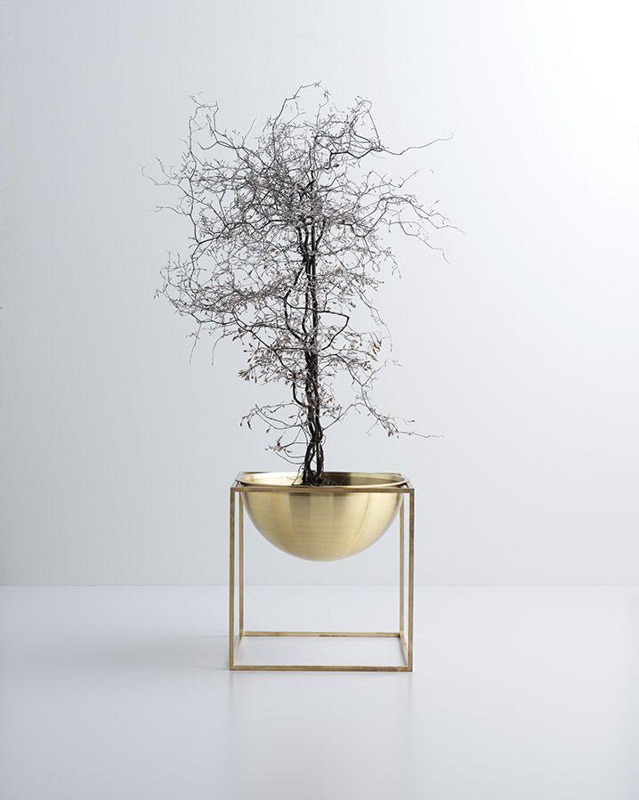 Une plante originale | architecture d'intérieur, design, home decor, interior design. Plus d'inspirations sur http://www.bocadolobo.com/en/inspiration-and-ideas/