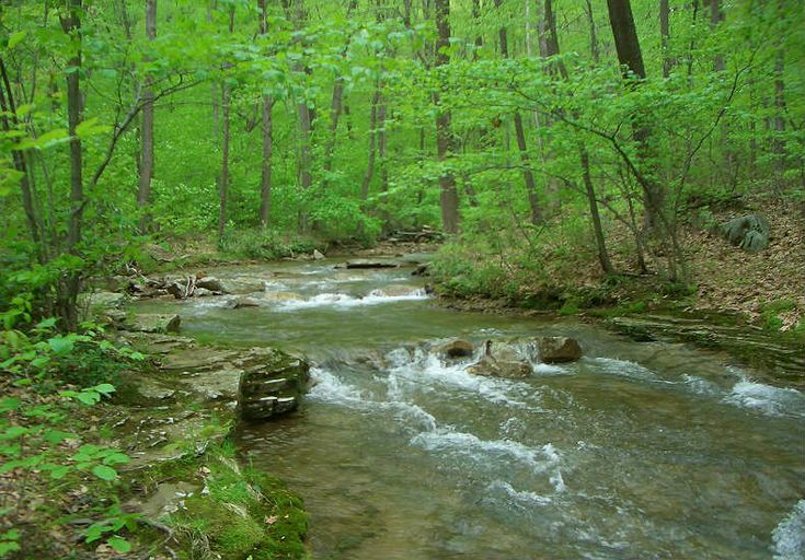 7 Swimming Holes Near Pittsburgh To Hit Before Summer Ends