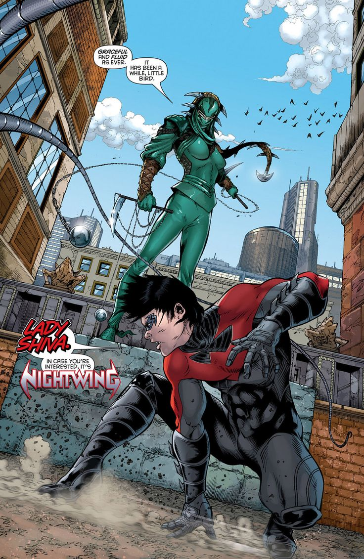 "aqualad87: "" He may be Nightwing but Lady Shiva remembers Dick being ""a little bird"" """