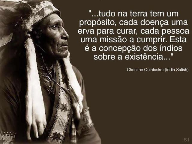 Dentro da Rede: Frases Indigenas