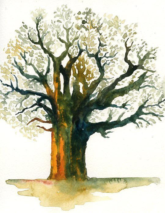 Baobab Print from my original watercolor painting 8x10 inch. $18.00, via Etsy.