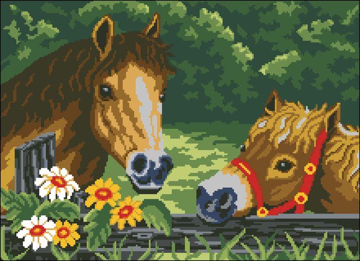dos+caballos.jpg (899×654)