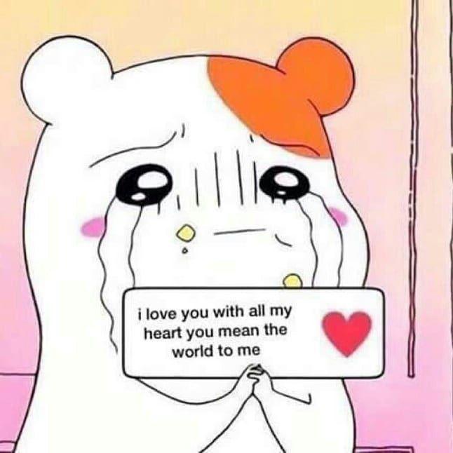 Love Support Loveandsupport Affection Loveandaffection Postmalone Post Malone Love Affection Support Memes Lilpeep L Kartu Kartu Lucu Stiker Lucu