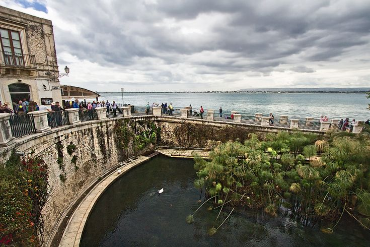 Fonte Aretusa in Syracuse, Sicily