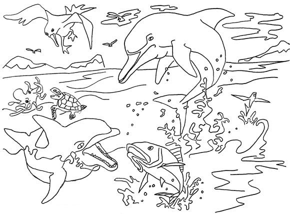 how to color river dolphin coloring page animals town animals color sheet - Dolphins Coloring Pages Printable