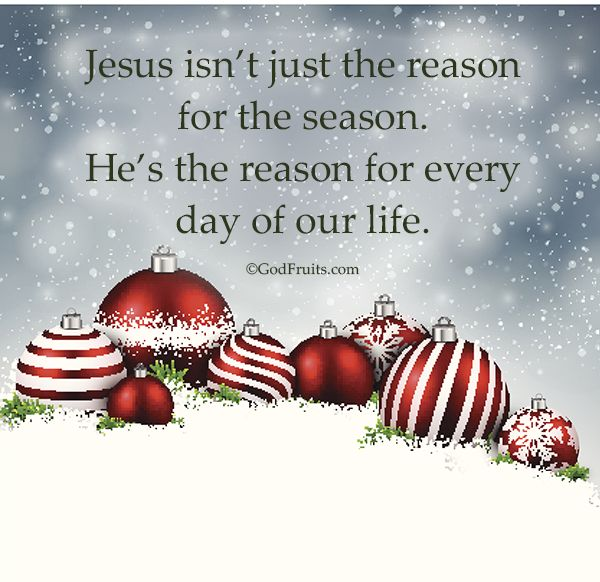 Jesus isn't just the reason for the season. He's the reason for every day of our life.