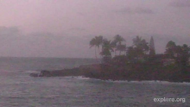 I'm watching the Waimea Bay Cam on @explore.org, streaming live from the Hawaiian Islands: