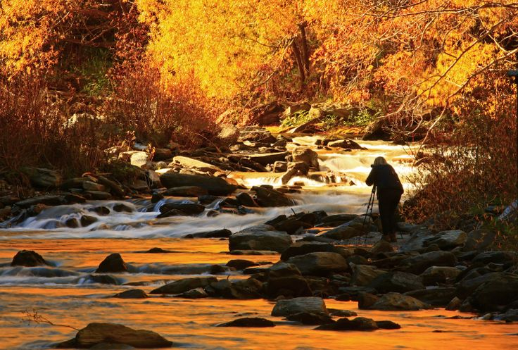 The Arrow river in autumn is a great spot for photographs. #queenstown #autumn