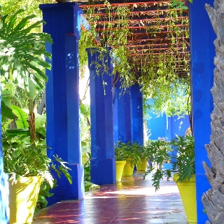 Majorelle Gardens in Gueliz has an entrance fee of 50 and is more expensive than other attractions. However, it provides an excellent respite from the hustle and bustle of the city streets. The park boasts a collection of plants from across the globe, including what seems like every cactus species on the planet. The Majorelle Café inside the gardens is a pretty and quiet place to rest and get a drink and some food, albeit at very expensive prices.