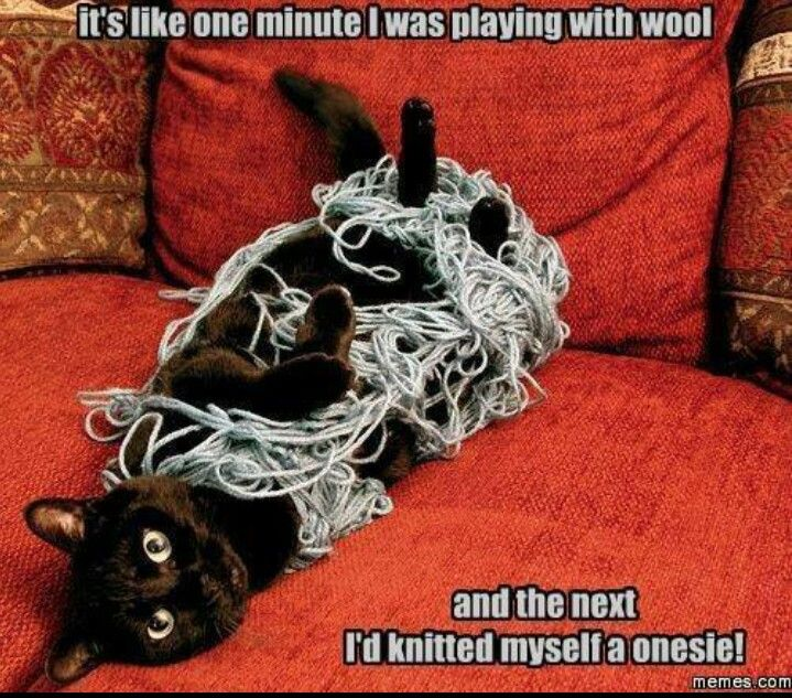 Idiots Guide to knitting
