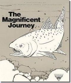 Wonderful story/explanation about salmon -- the Magnificent Journey
