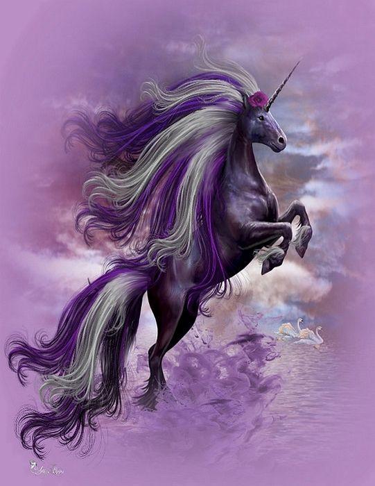 881 best leslie 39 s unicorn page images on pinterest for Loveland tattoo shops
