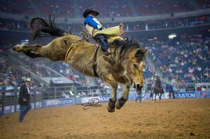THE WILD BLUE YONDER - Chris Kyle - Bareback Bronc Riding - Houston Stock Show & Rodeo - Houston, Texas.