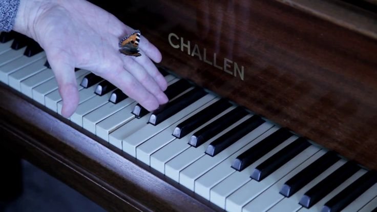 Butterfly Hurricane original composition by Kevin James on Hurricane Smith's Challen grand piano at Besbrode Pianos