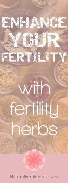 Enhance your fertility with fertility herbs.