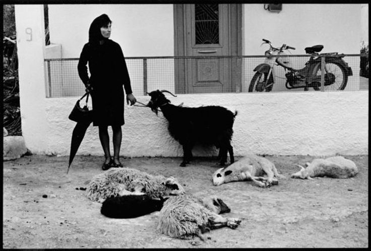 Constantine Manos / Woman with goat / 1960's Greece