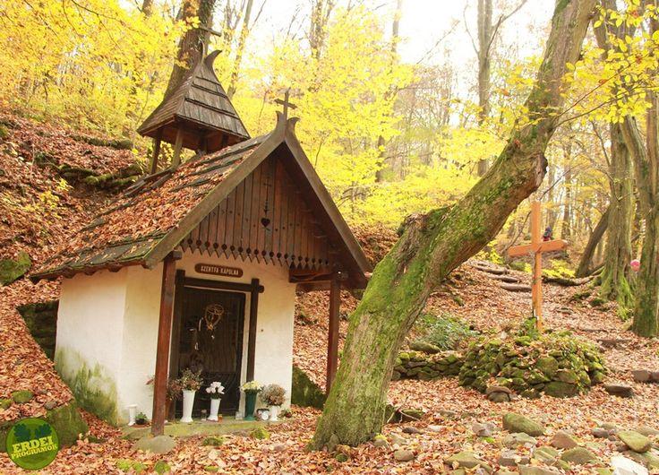 Szentfa-kápolna és forrás, Visegrádi-hegység, Dömös   Erdeiprogramok.hu - Élményekben gazdag magyar erdők