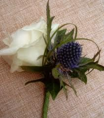 white roses with thistles - Buscar con Google