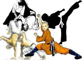 Risultati immagini per arti marziali