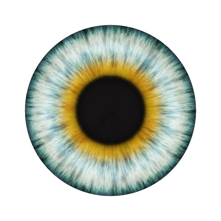 platos the allegory of the cave the bodily eye and the minds eye Plato's line is also a division between body and mind  visible, meaning that it  is seen by the mind (510e), by the greek nous (νοῦς), rather than by the eye.