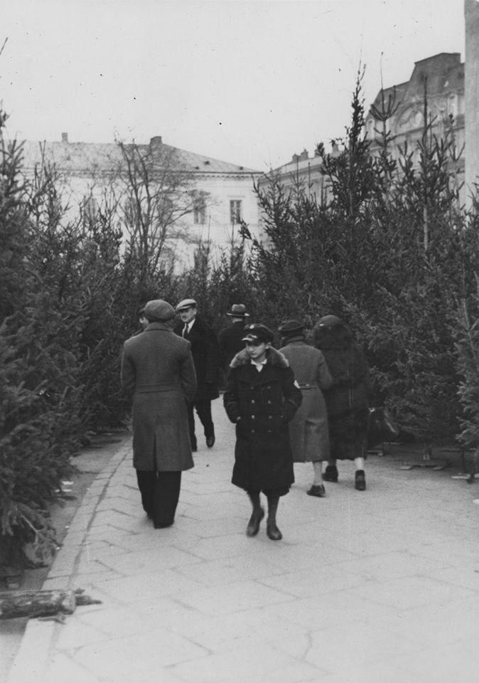 Sprzedaż choinek przy Placu Trzech Krzyży. fot. 1934r., źr. Narodowe Archiwum Cyfrowe.