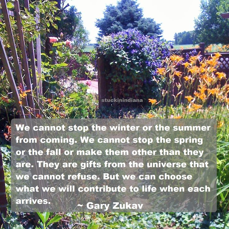 """""""We cannot stop the winter or the summer from coming. We cannot stop the spring or the fall or make them other than they are. They are gifts from the universe that we cannot refuse. But we can choose what we will contribute to life when each arrives."""" ~ Gary Zukav #quote"""