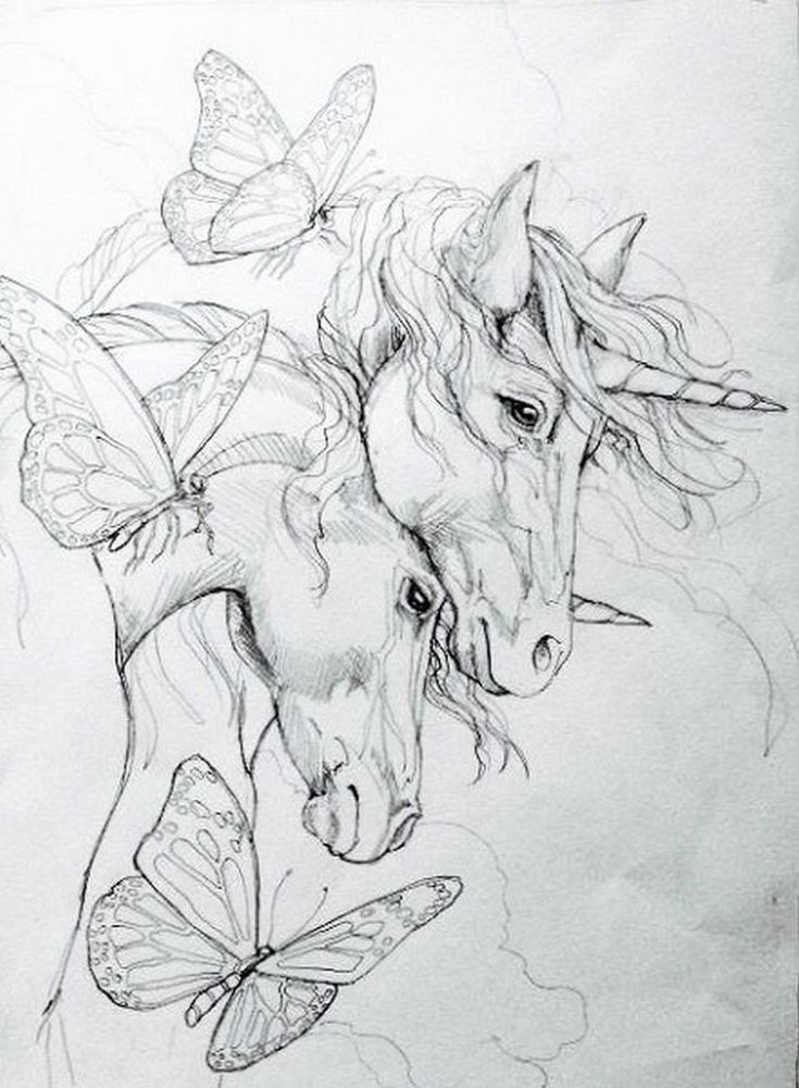 unicorn coloring pages for adults  seepferdchen zeichnung