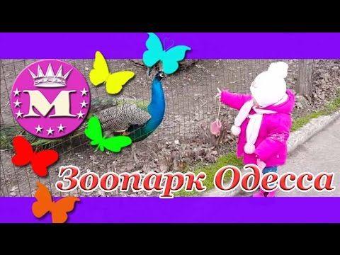 Одесский зоопарк.Прогулка в Зоопарке.Животные зоопарка/Odessa Zoo