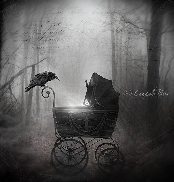 """Crows Ravens:  #Raven ~ """"Birth In the Darkness,"""" by Aeternum-Art, at deviantART."""
